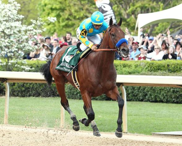 american-pharoah-ark-derby-coady-1000x800_resized2015-4-12-21-5-615